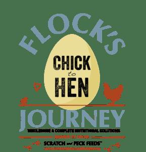 #flocksjourney #scratchandpeckfeeds
