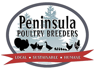 Peninsula Poultry Breeders Organic from Day 1