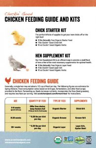 Scratch and Peck Feeds Chicken Feeding Guide