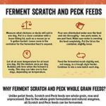 Scratch and Peck Fermenting Feeds