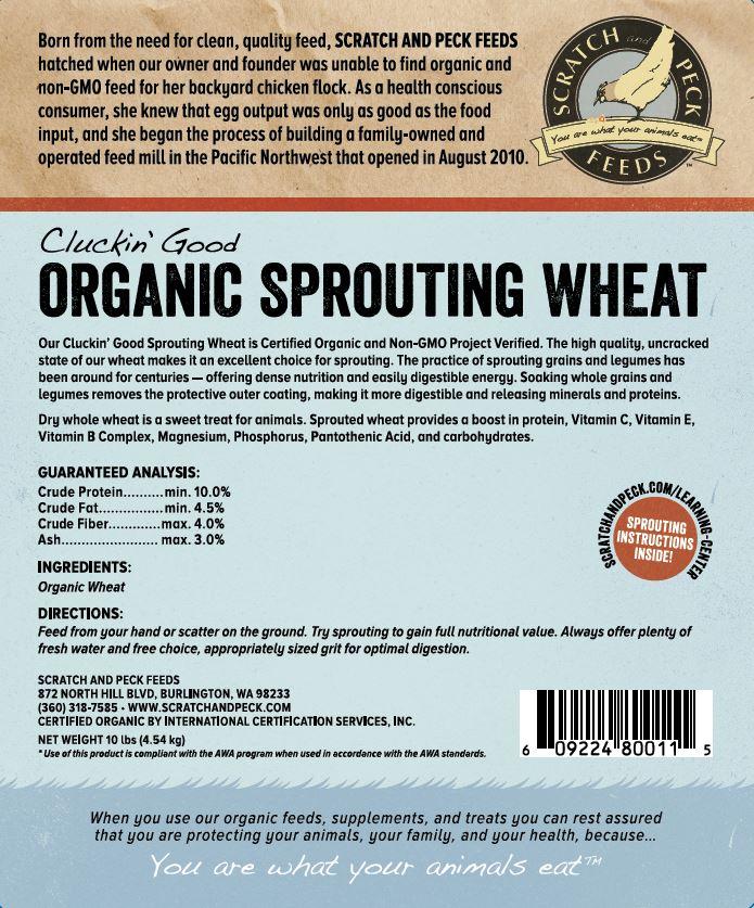 Cluckin' Good Organic Sprouting Wheat
