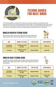 Scratch and Peck Feeds Broiler Feed Guide