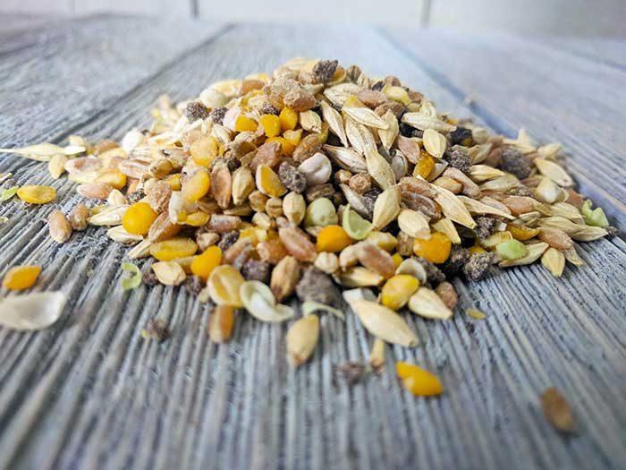 scratch-peck-feeds-naturally-free-organic-grower-2018