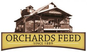 Orchards Feeds