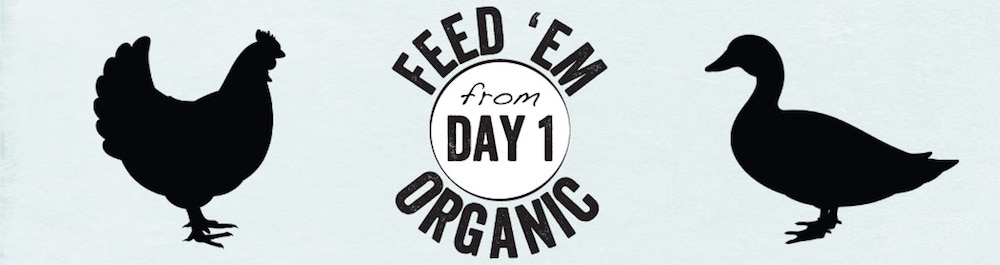 Feed 'em Organic from Day 1