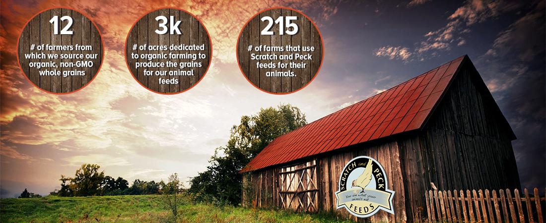 scratch-peck-feeds-organic-farming