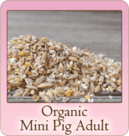Scratch and Peck Feeds Organic Mini Pig Adult