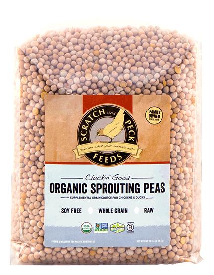 organic-sprouting-peas