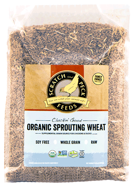 scratch-peck-feeds-organic-sprouting-wheat-2018