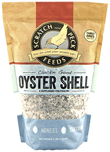 cluckin-good-oyster-shell