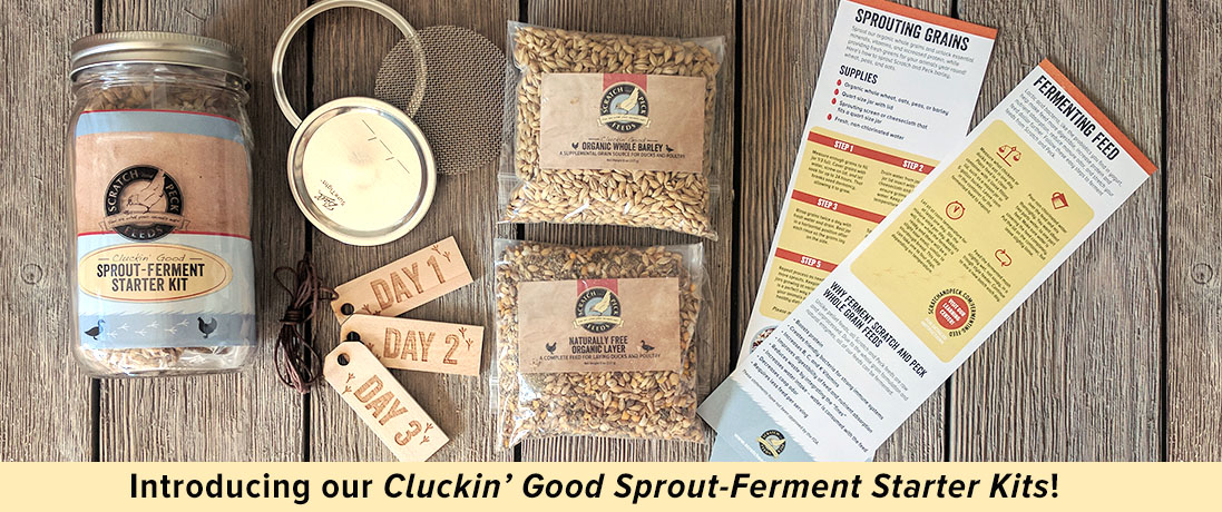 Cluckin Good Sprout Ferment Starter Kit