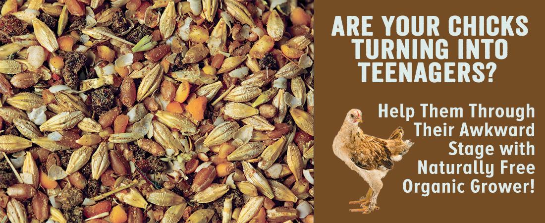 Naturally Free Organic Grower Feed